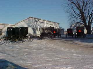 Amish Tour